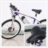 販売のための速いMTB Ecoのサイクルの電気バイク