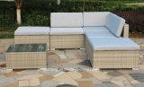 Sofa meubles de jardin de rotin et de rotin extérieurs de PE