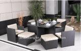 Rotin Hc-W-S20 extérieur dinant le jeu et les meubles extérieurs de patio
