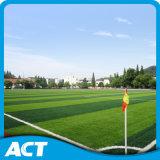 Het natuurlijke Kijken het Synthetische Gras van de Voetbal van de Weerstand van het Gras UV