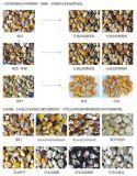Spitzen-CCD-Mais-Farben-optische Trennzeichen-Maschine
