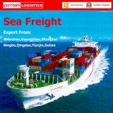 Вещество перевозки/перевозка перевозкы груза/перевозка моря от Кита к всемирно
