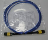 MPO / APC-MPO / APC Fibre optique Patch Cord pour Data Center
