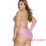 Способ плюс Swimsuit Underwire размера Striped Curvy