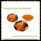 Luteína natural del extracto de la maravilla de la alta calidad el 100%