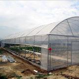 저가 농업 중국에서 판매를 위한 단 하나 경간 필름 온실