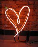 Diodo emissor de luz ao ar livre e interno que ilumina a arte do néon do sinal de néon