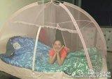 浜の演劇のテントのためのハングの蚊帳