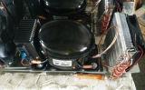 Compressore di CC di R134A 12V/24V per il frigorifero, il frigorifero ed il congelatore