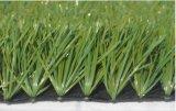 La nuova erba artificiale, l'erba sintetica, tappeto erboso sintetico, mette in mostra l'erba