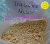 Legit Tren ссыпая ацетат Trenbolone порошка стероидных инкретей цикла