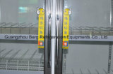 Sechs Glass Doors Upright Gehen-in Freezer mit Cer