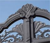 Puerta principal del metal caliente de la venta Lh-016