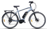 都市モデルは、中間運転する電気バイク(TDB18Z)を