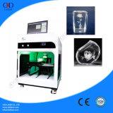 Machine van de Laser van de Gravure van de hoge snelheid 3D Binnen