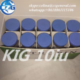 blaue Handhabung- am Bodenhormon-Handhabung am Boden der Oberseite-191AA, Kig, Summen, Hyg 10iu/Vial für Bodybuilding