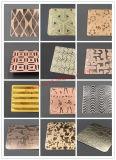 De hete het Verkopen Goede Kwaliteit PVD bedekte Decoratief Blad 304 van de Kleur van het Roestvrij staal het Blad van het Roestvrij staal met een laag