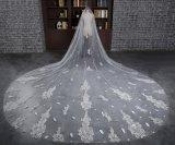 真新しいカテドラルの長さ3メートルの完全なアップリケのアイボリーの結婚式のベール