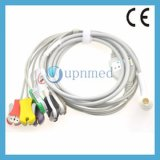 Cable del terminal de componente ECG de Corpuls 6 con los Leadwires