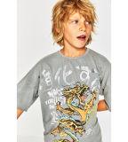Camisa impressa Pterosaur de T do menino da fábrica