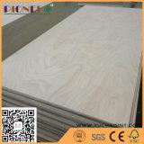 De qualidade superior madeira compensada comercial em madeira compensada de folheado branco