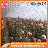 Groenten / Garden / Flowers / Farm Film Greenhouse