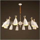 Ferro da lâmpada do pendente do projeto moderno & lâmpada do pendente do alumínio para a sala de estar Decorotion