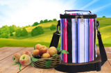 Im Freien beweglicher thermische Isolierungs-Picknick-Mittagessen-Multifunktionsbeutel