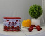 Heiße Verkaufs-Tomatensauce, Tomatenpflanze-Hersteller-Preis