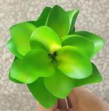Искусственние цветки/Succulents заводов для украшения дома/офиса