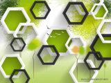 квадрат 3D с ландшафтом природы напечатал на панели стены для домашней картины