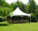 Tente en aluminium de pagoda de la tente 5X5m de mariage de qualité