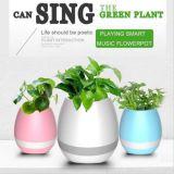 Flowerpot sec de musique de Bluetooth de prix usine avec l'éclairage LED
