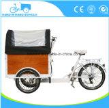 Elektrisches oder Pedal-Ladung-Fahrrad mit Regen-Deckel