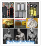 High Quality Taurine Supplement Nutrición Óptima para Atletas CAS 107-35-7