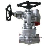 800lb/1500lb a modifié le robinet d'arrêt sphérique de l'extrémité d'amorçage de l'acier inoxydable F304 TNP