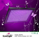 luz del panel ULTRAVIOLETA de 192PCS 5m m LED para la iluminación de la etapa