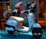 500W/800W 전기 자전거, 전기 스쿠터, 전기 2 짐수레꾼 (GME11E)