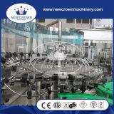 China Monoblock Van uitstekende kwaliteit 3 in 1 het Vullen van het Water van de Kokosnoot Machine (de fles van het Glas met aluminium GLB)