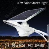 2016 nuovo indicatore luminoso solare tutto del cigno del reticolo 40W in un indicatore luminoso di via solare per la via della strada