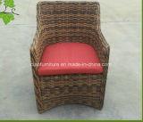 Vector y silla de mimbre de la rota del jardín del hotel al aire libre de lujo de los muebles