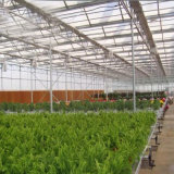 Продукция Hydroponics в аграрном парнике
