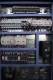 Máquina de dobra hidráulica do CNC da série de Wc67k-250X3200 Wc67k