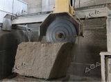 10 lamierine lapidano la macchina per i blocchetti del granito di taglio nelle lastre