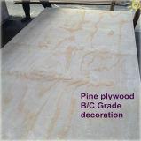 Face de pin et contre-plaqué arrière pour renforcer les Chambres C/C WBP