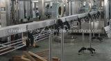 Het Vullen van het Sap en van het Water Machine de van uitstekende kwaliteit (rcgf16-12-6)