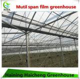 Дом тоннеля пяди Mutil зеленая для растущий цветков