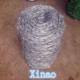 고품질 PVC에 의하여 입히는 꼬이는 가시철사 (XA-BW001)