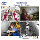 Konkrete Stangen-Schraube mit Kontaktbuchse für Tunnel-Aufbau