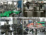 Goma de tomate conservada 2000g, 3000g, 4000g línea entera maquinaria de la producción
